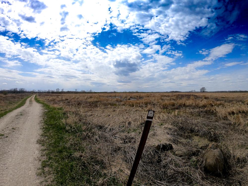 Midewin Henslow Trail