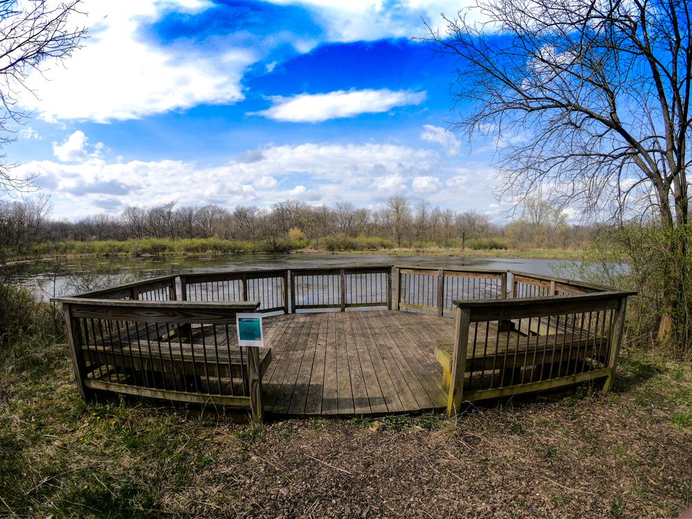 Buttonbush Pond Midewin