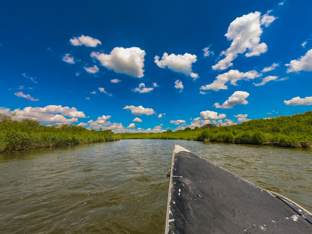 Nippersink Creek Illinois paddling