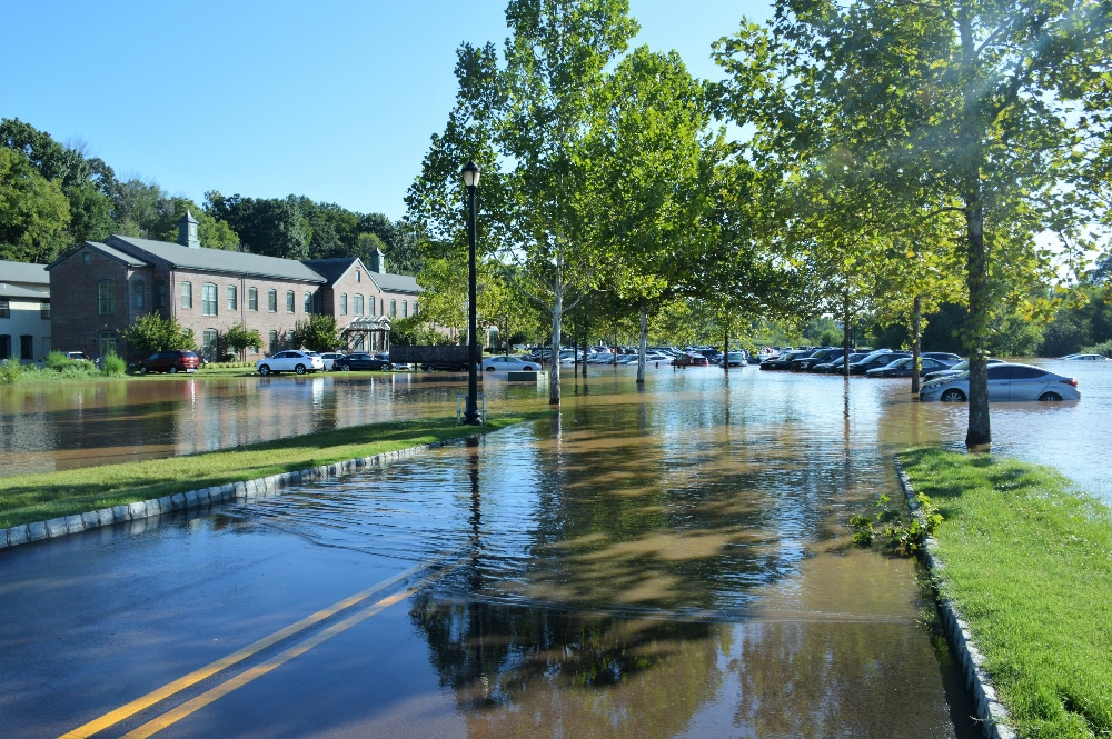 Cancel culture Hurricane Ida flooding