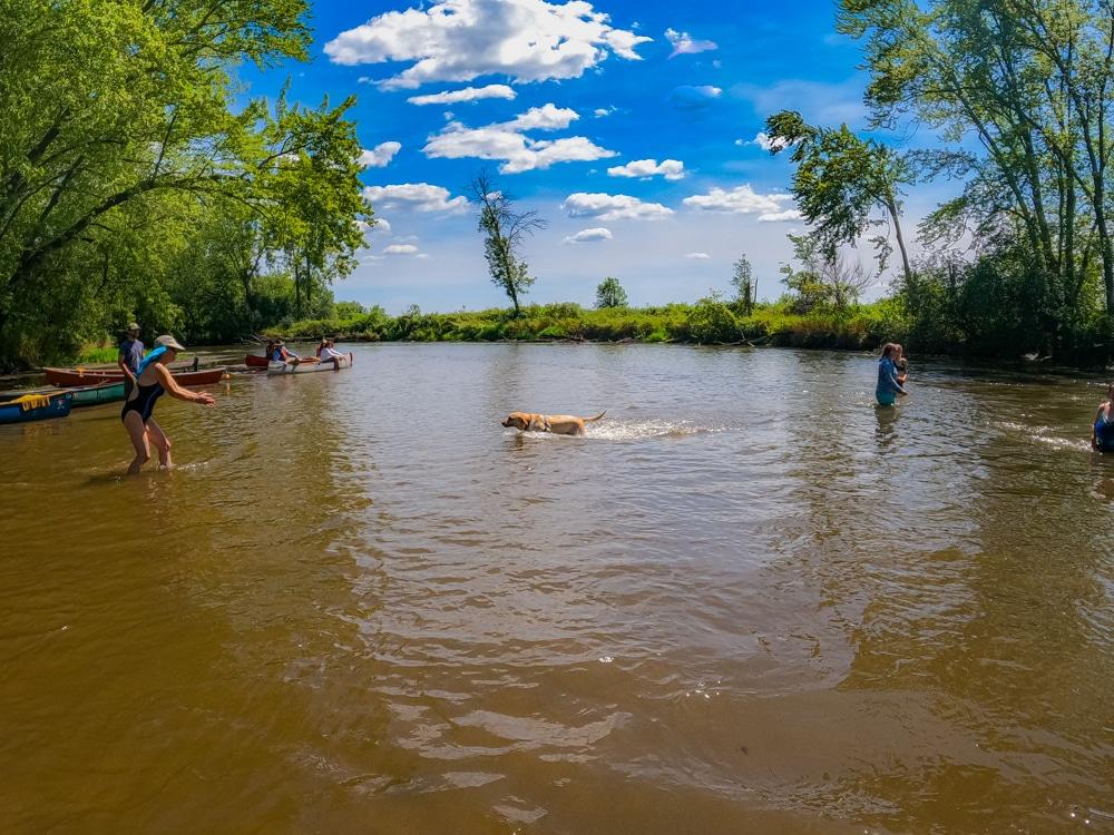 Cancel culture Sugar River Illinois
