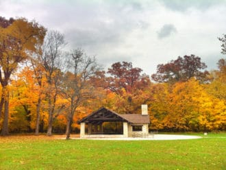 Chicago fall colors guide